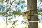 홍릉숲-미래푸르미-숲체험프로그램