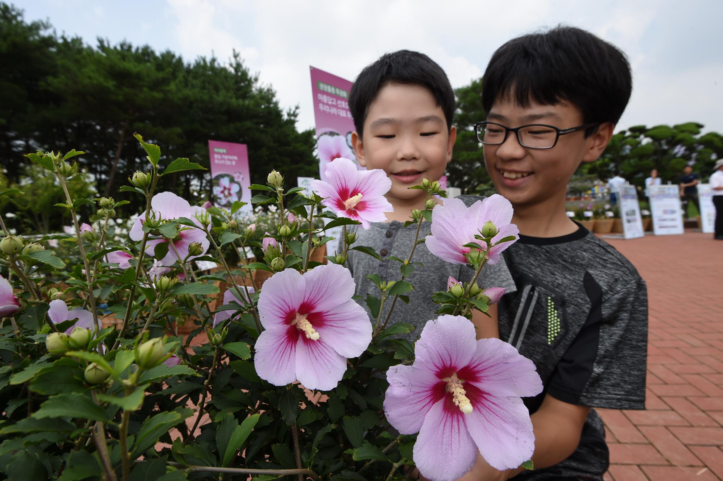 나라꽃 무궁화 전국축제, 세종·수원서 열린다 이미지1