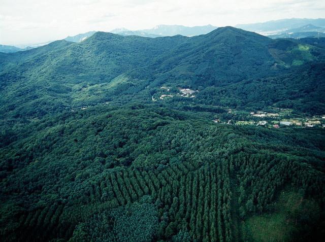 산림청, 2021년 세계산림총회 유치 제안서 제출 이미지1