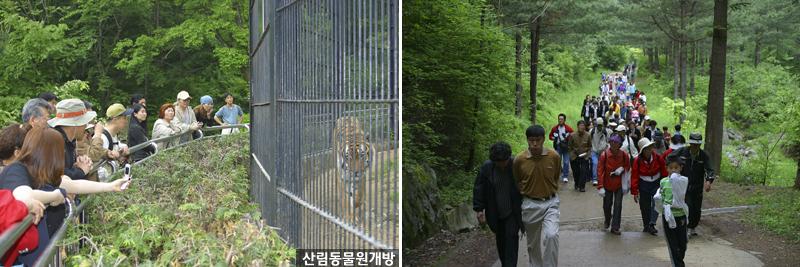 5월 17일부터 산림동물원 개방 이미지1