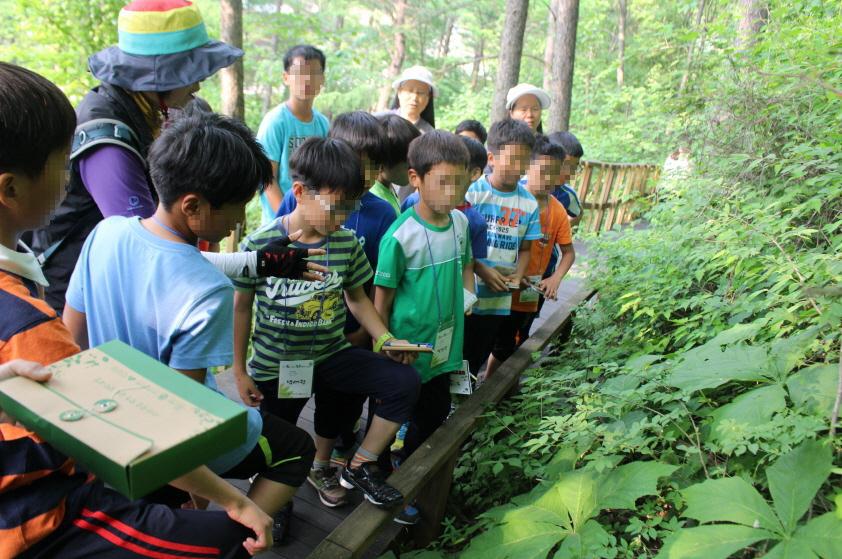 산림치유 프로그램, 보호아동 정서 개선에 효과 이미지1